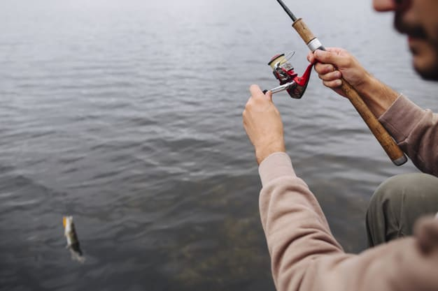 The Importance Of A Fishing Pole