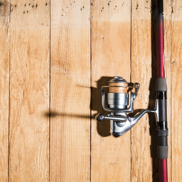 How To Choose A Fishing Reel?