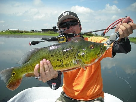 Bass Fishing Tips: How To Catch Bass