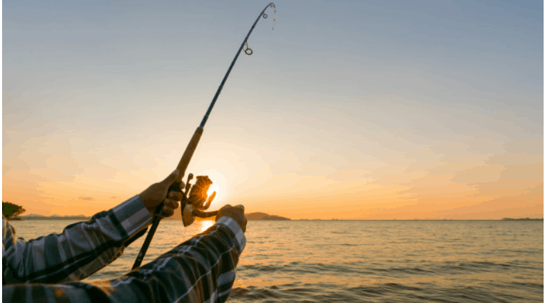 Choose The Best Lures of All Time
