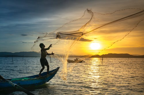 Top Ranked Best Fishing Nets To Get a Good Catch in 2020