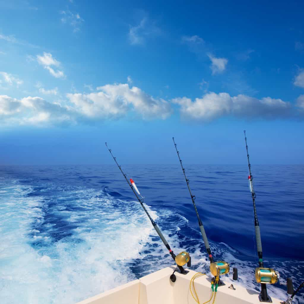 What Can You Catch While Deep Sea Fishing?
