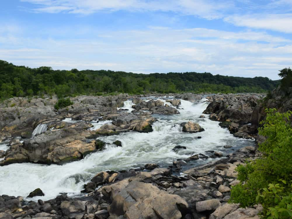 Finding The Best Potomac River Fishing Spots
