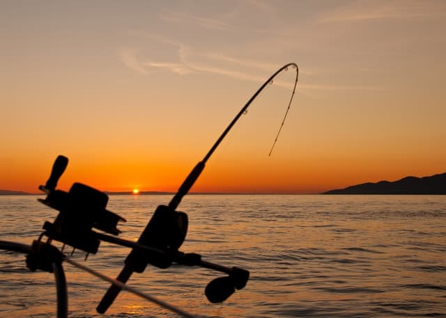 essential tools for your fishing tools kit